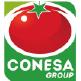 logo Conesa